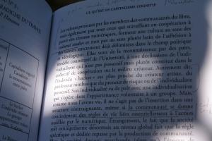 cognitif2