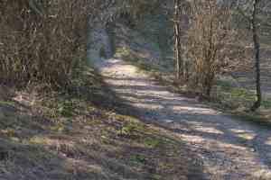 Chemin...